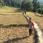 自然豊かなカカニ&トリスリで、ネパールの休日を満喫してきました